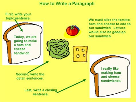 How to write a great paragraph in an essay